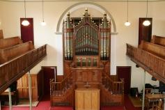 Organ 2010 1