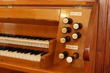 Organ 2010 5