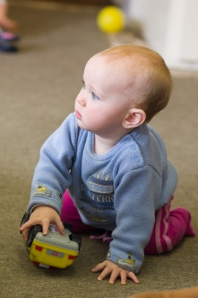 Toddlers and Babies 2017 15